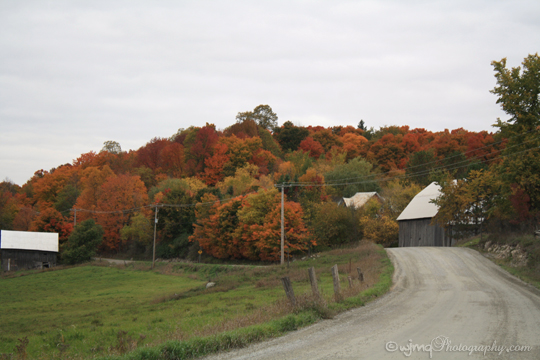fall_barn_road_IMG_5935