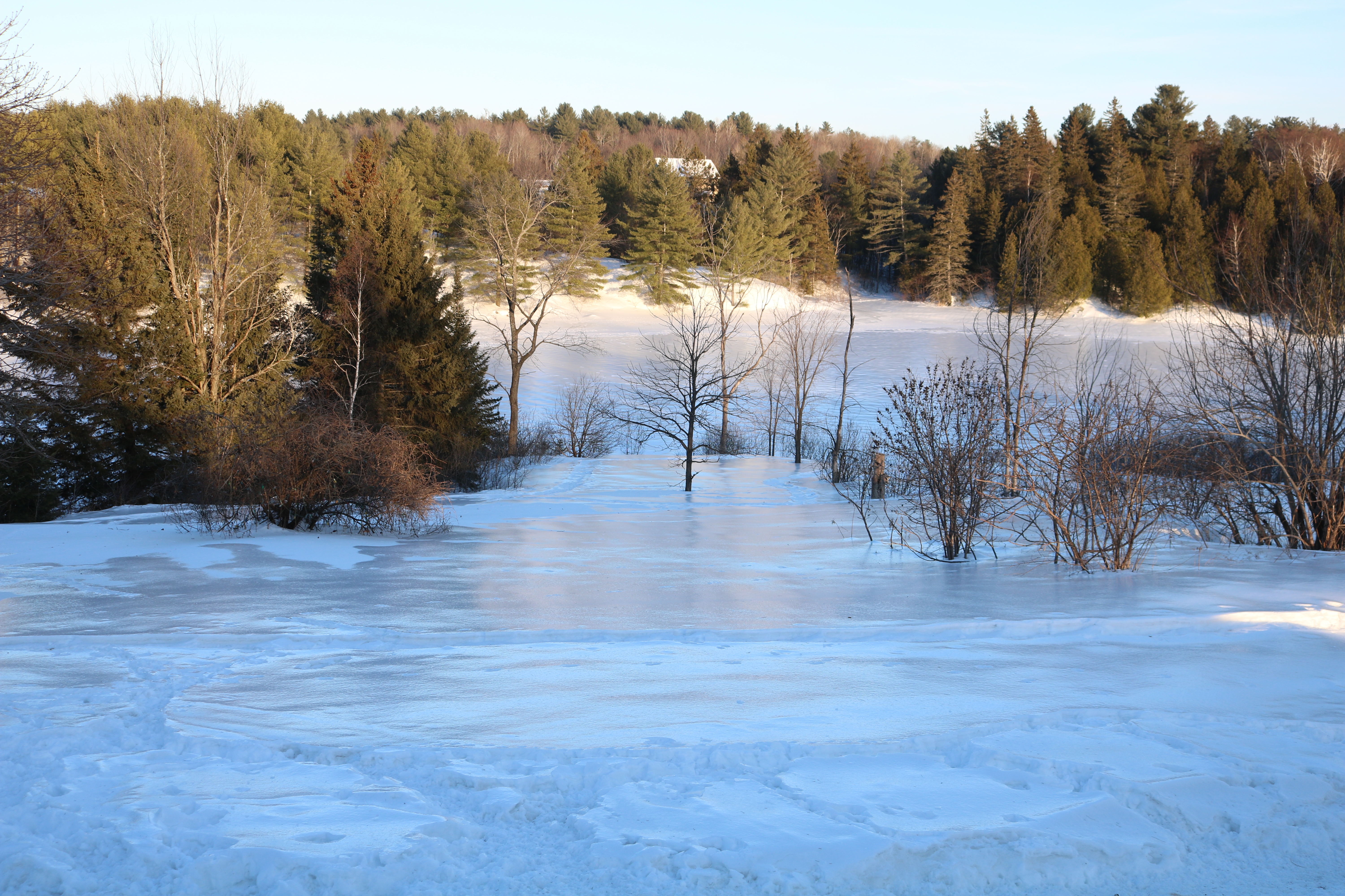 landscape photo of country scene of an icy crusty slope towards a frozen river, trees all around.