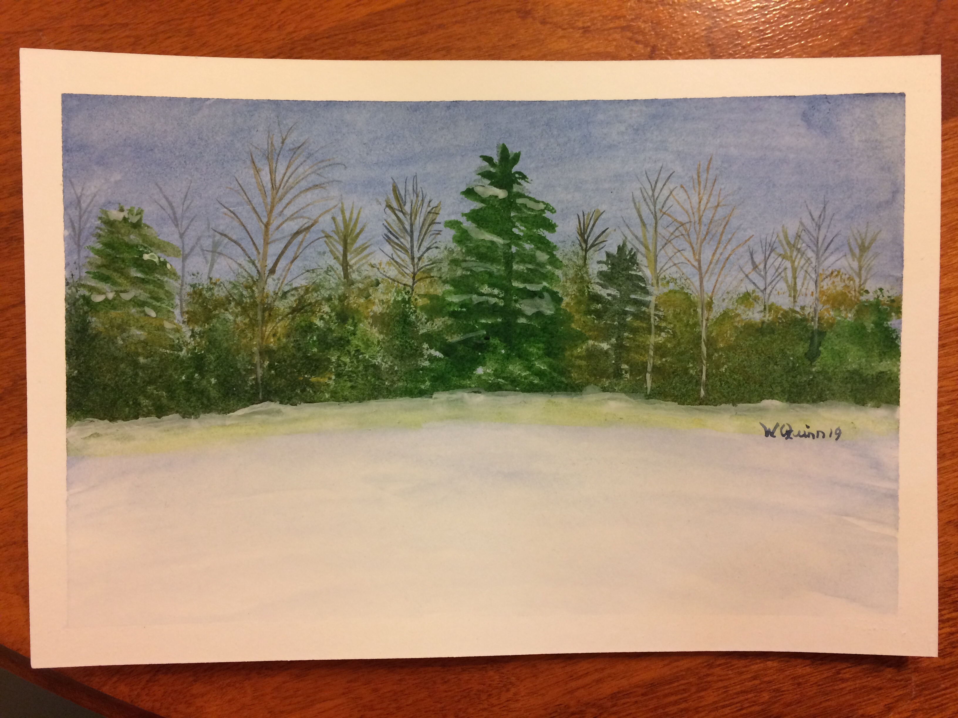 watercolour painting of landscape, dark blue sky, forest of a mixture of trees and snow.