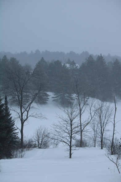 landscape photo of country scene in the snow