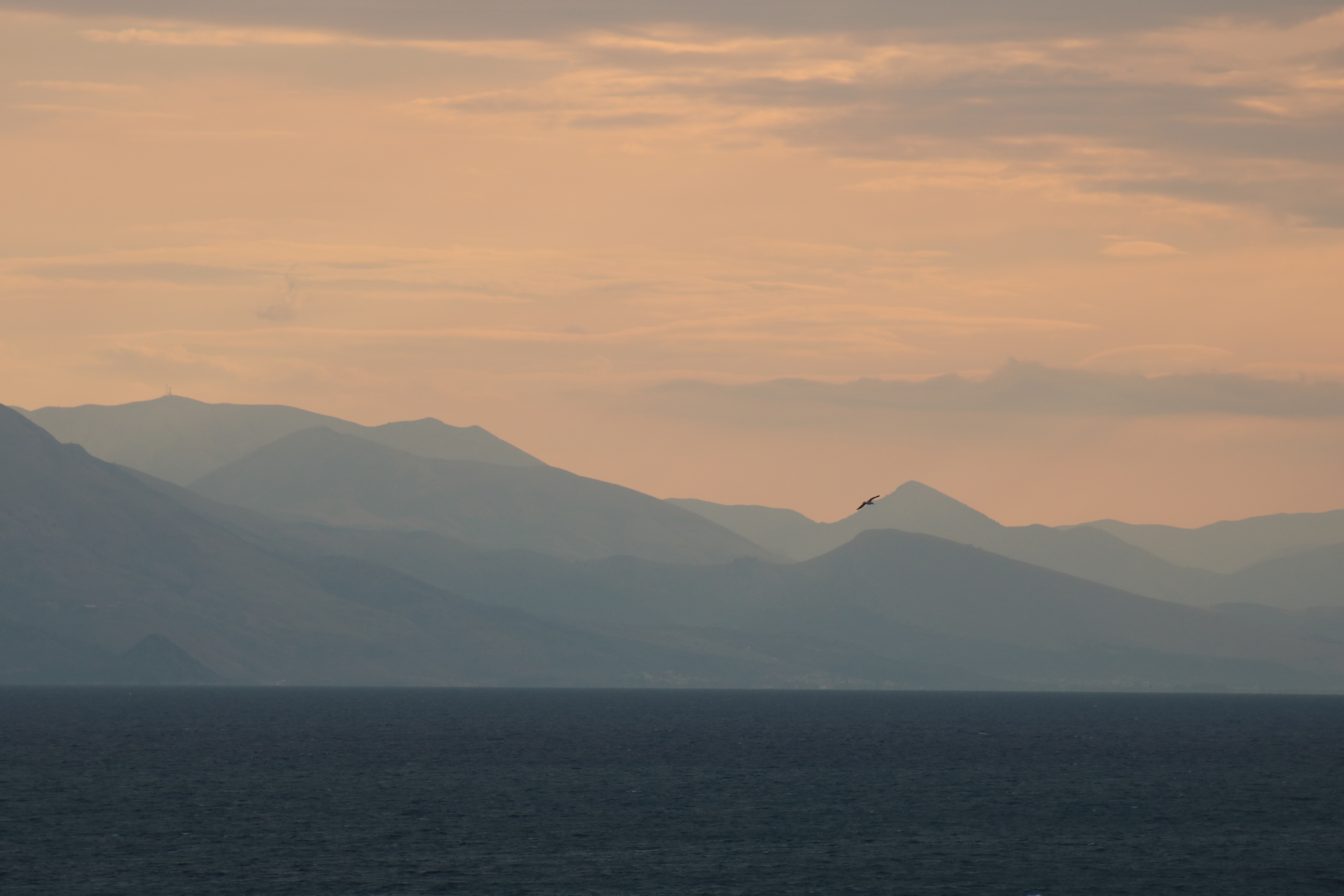 image of corfu greece, mountains, sea and bird at sunset