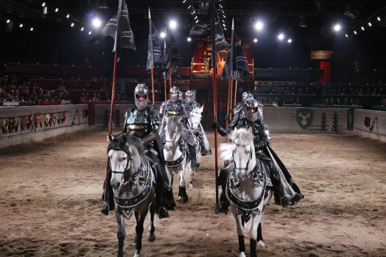Photo of horses and knights.
