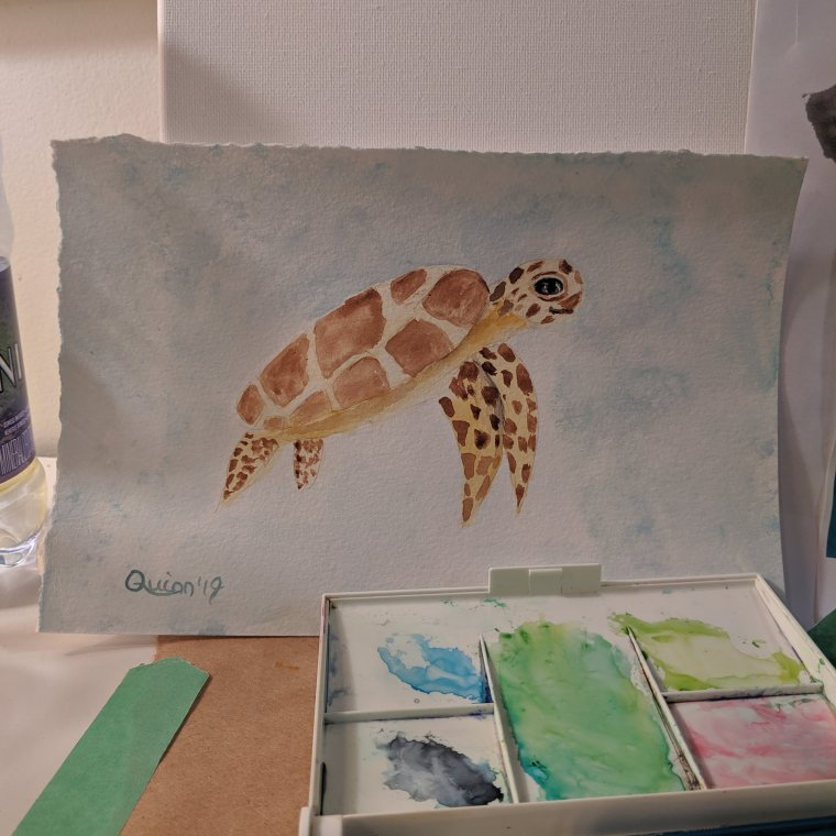 Watercolor painting of sea turtle