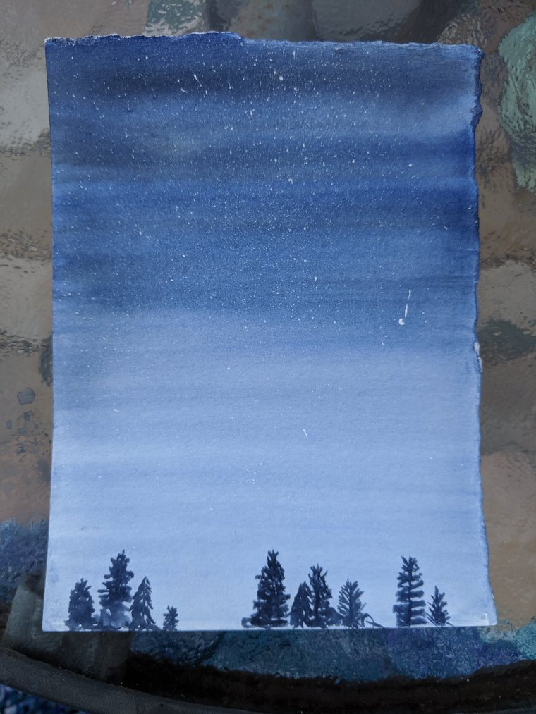 Watercolor painting night sky with stars a top of evergreen trees