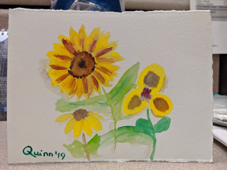 Watercolour painting yellow flowers
