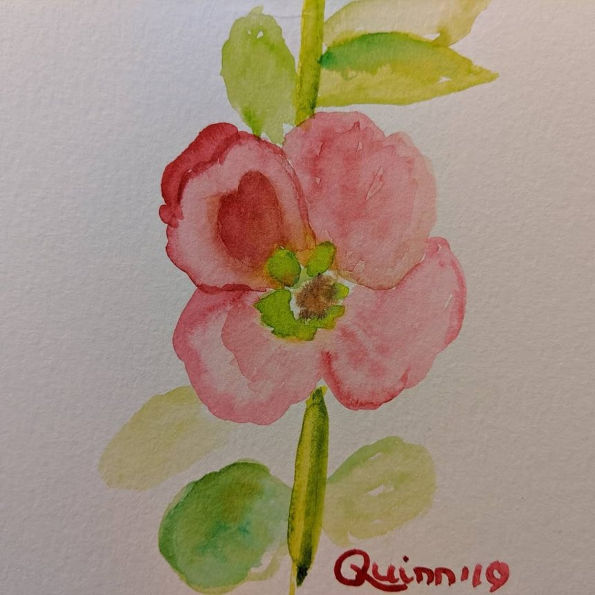 Watercolour red hollyhock