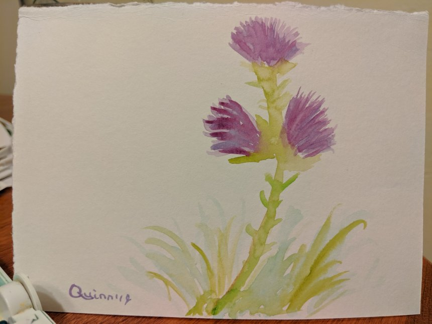 Watercolour painting pink thistle