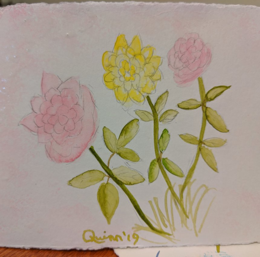 Watercolour painting two pink roses and one yellow rose with green leaves and stems