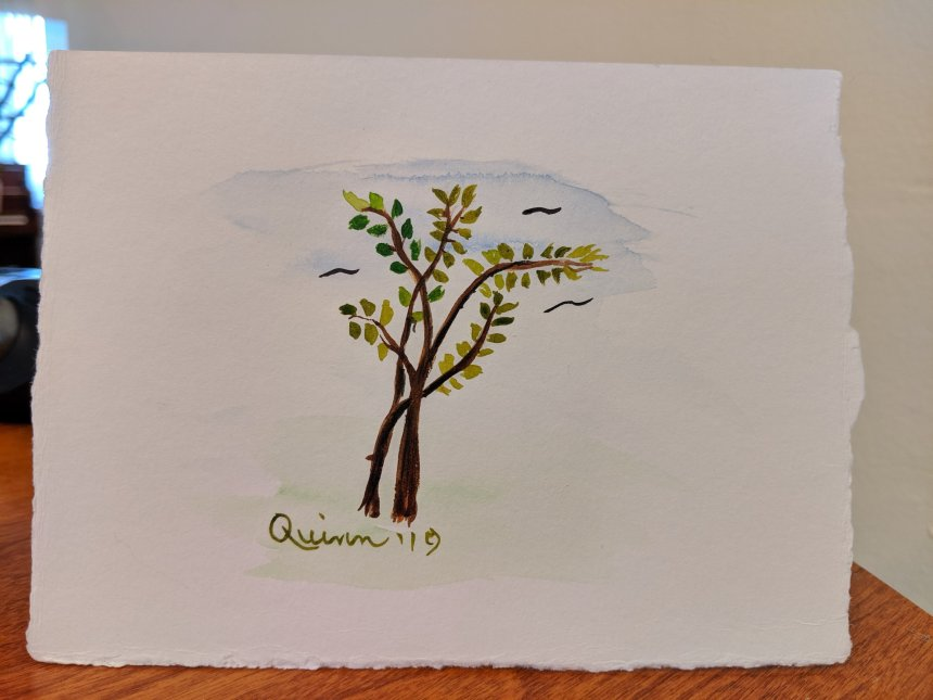 Watercolour painting two trees entwined