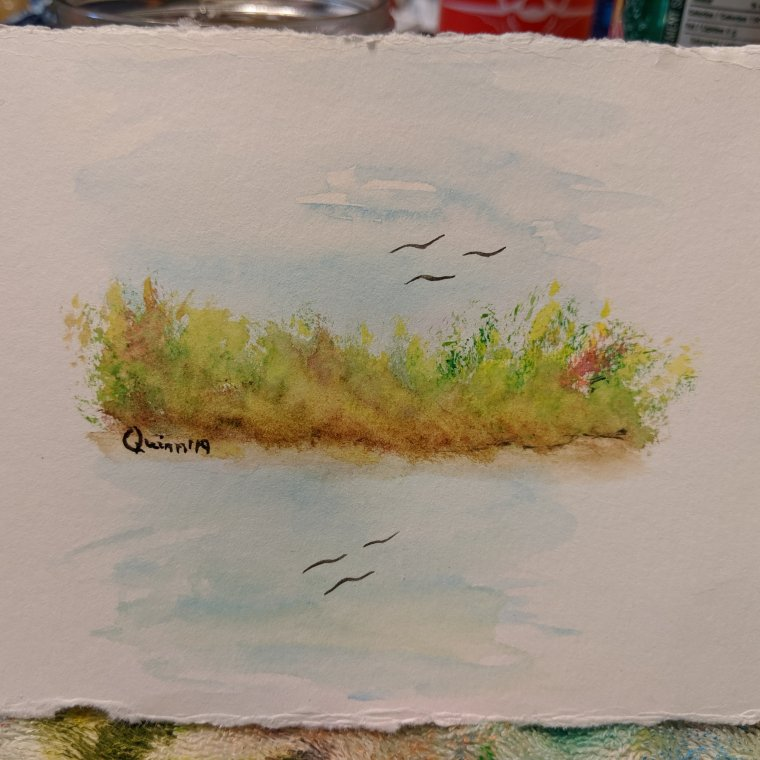 Watercolour painting landscape sky, bush, water, birds reflecting in water