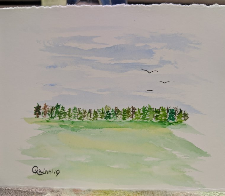 Watercolour painting landscape sky, grass and tree line