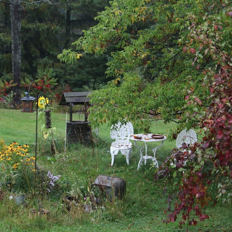 Flower garden with bird feeders, white Victorian chairs and table, black eye Susan and sunflowers