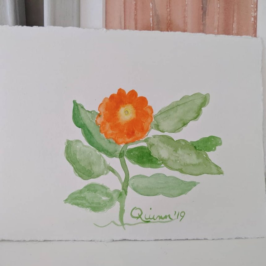 Watercolour painting orange flower and green leaves