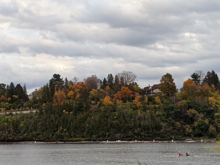 Rowers on river