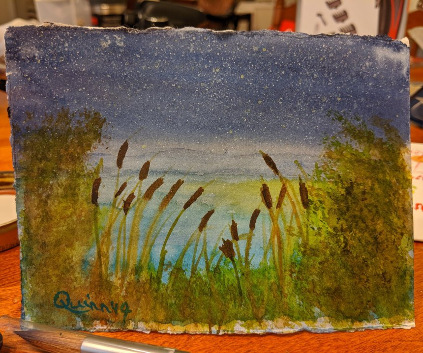 Starry night with cattails watercolour painting