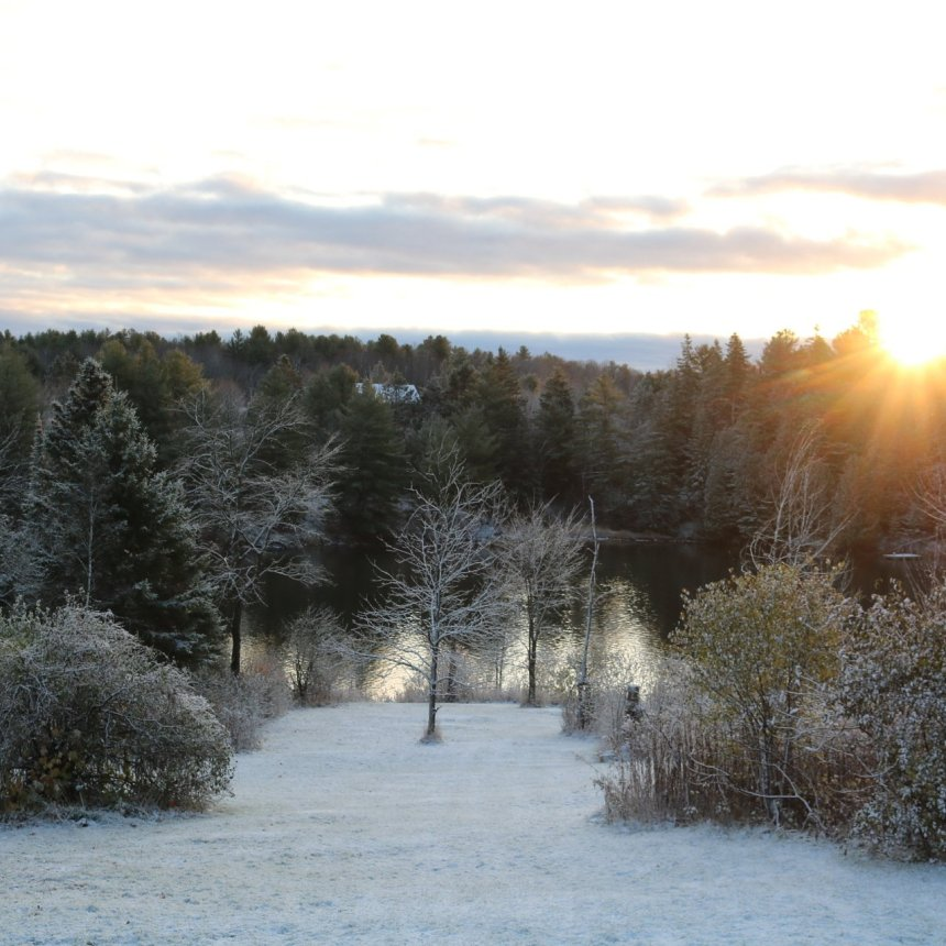 Snow covered lawn sloping to a river with geese swimming and the sun peeks out from behind a cloud bathing the area in warm light
