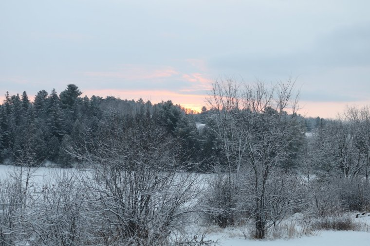 Sunrise is pink and blue over a snow covered field