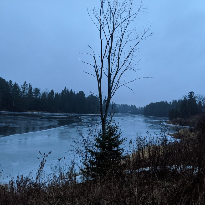 River and trees in rain during blue hour
