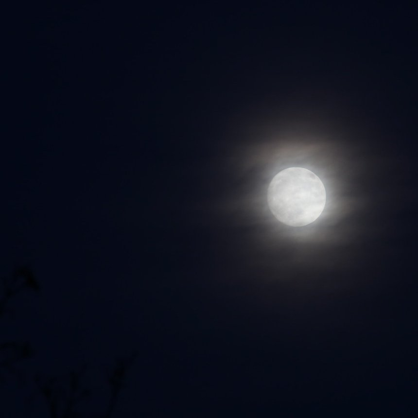 Yellow, full moon, with whispy clouds floating in front of it in a very dark sky