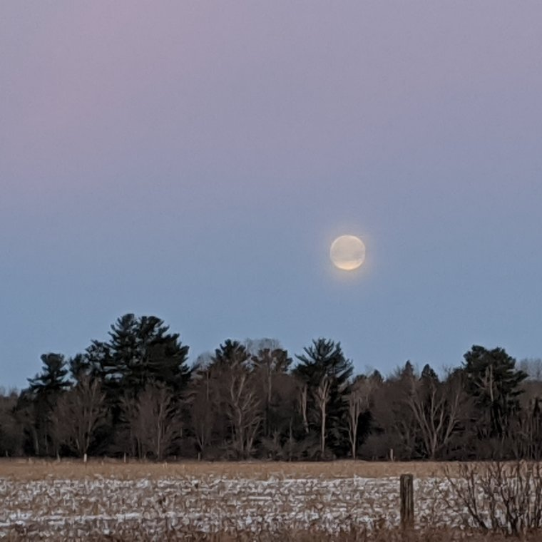 Full moon fading into whispy clouds as it begins its descent over a field of harvested aoy
