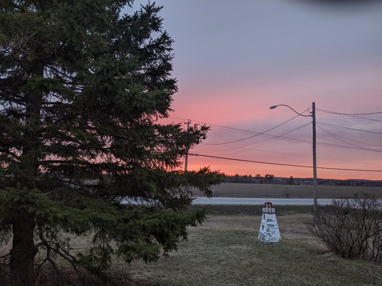 pink and blue sky framed by a large spruce tree, highway, street lamp and lawn lighthouse ornament.