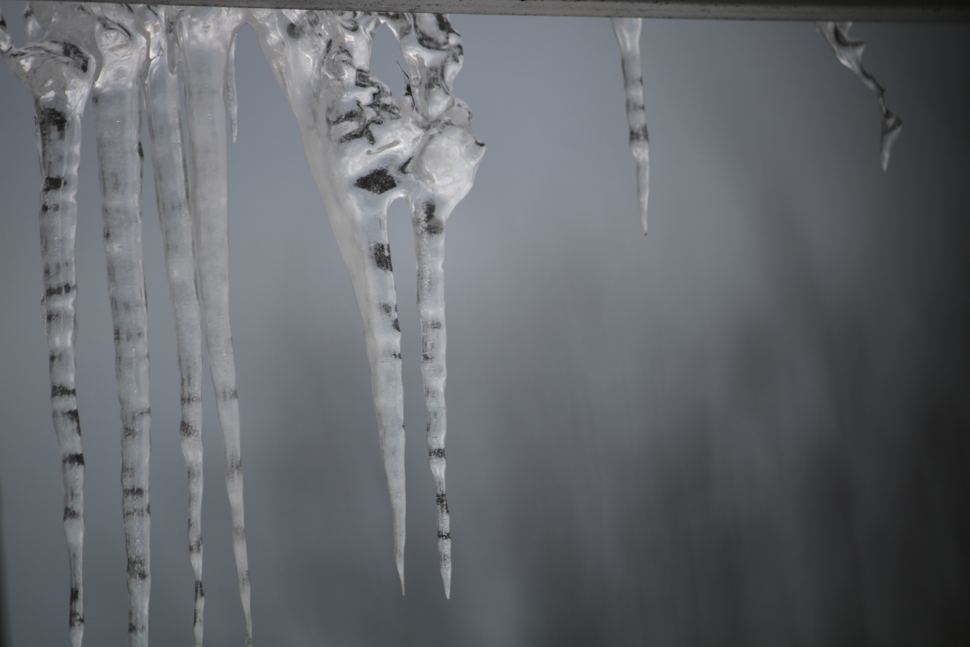 Five icicles about a foot in length hang from veranda roof